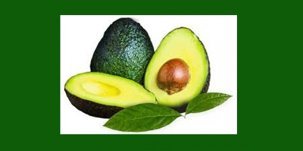 Aguacate 98065